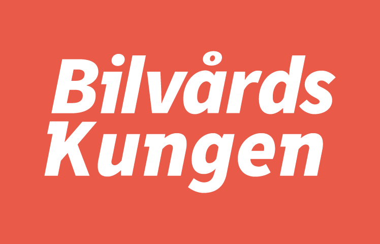 logo.png') }}